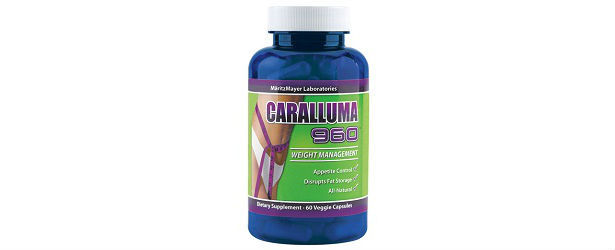 Caralluma Burn Side Effects