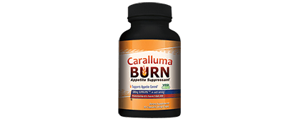 Caralluma Burn Review