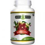 Herba Roots Caralluma Review 615